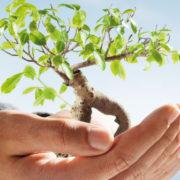 U pripremi novi zakoni i mjere za daljnji gospodarski rast i strateške investicijske projekte!