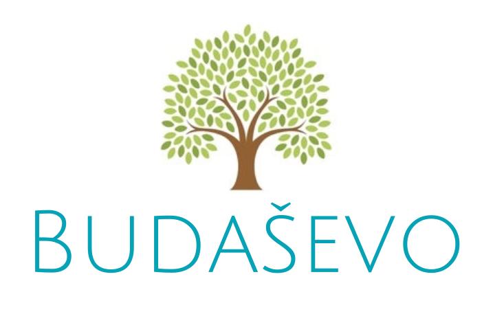 Budasevo logo